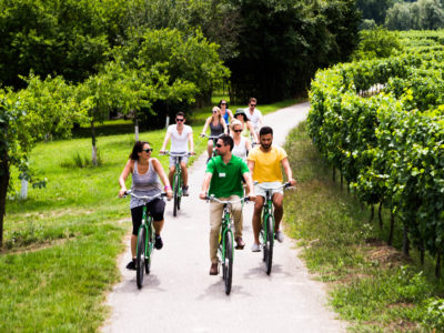 group riding through vineyards at Wachau Valley
