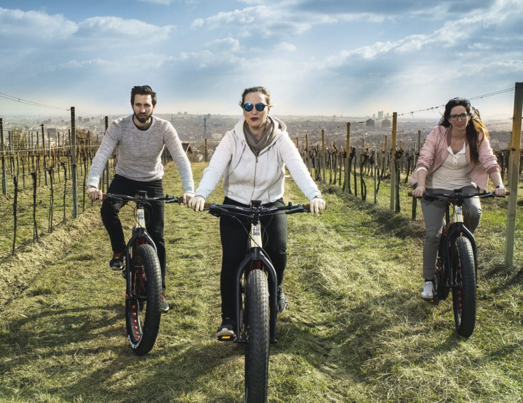 Electric bikes in Vienna vineyards