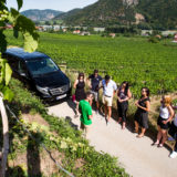 Guide shows Wachau Valley on a guided tour